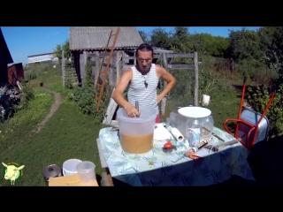 Как сделать СИДР (яблочное вино) в домашних условиях. Рецепт Натальи Болденковой
