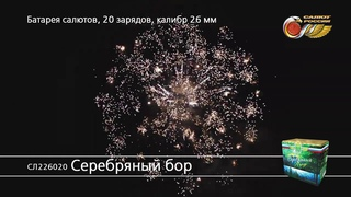 СЛ226020 Серебряный бор
