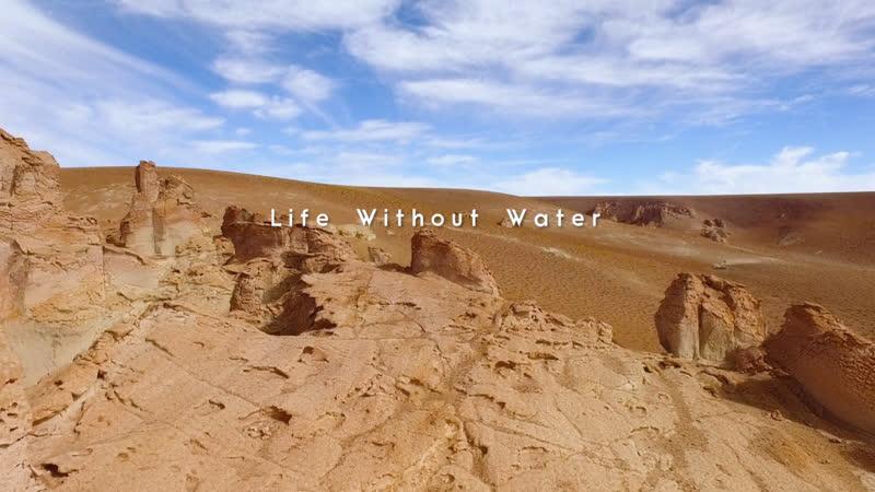 Дикая природа Чили Жизнь без воды 3 серия из 3 2017 HD 1080