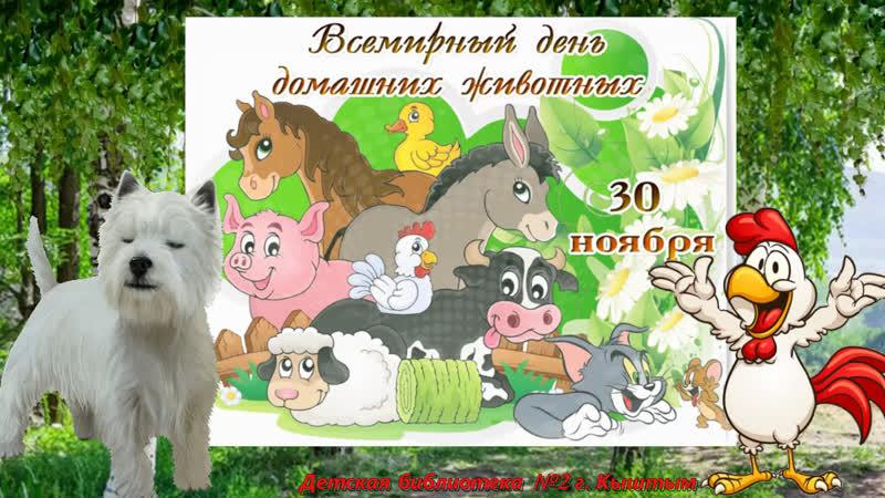 Читаем стихи о домашних животных Мастер класс библиотекаря Малышевой Т МАСТЕР КЛАСС Овечка