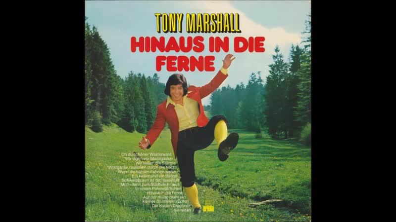 Tony Marshall Auf der Heide blüht ein kleines Bl 480P смотреть онлайн без регистрации