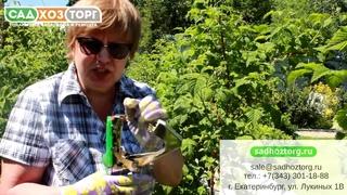 Тапенер, или степлер для подвязки растений. Подвязка быстро и легко.