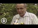 Ультрафиолет побеждает бесплодие | Помоги себе сам (1991)