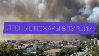 Лесные пожары в Турции подобрались к Анталии