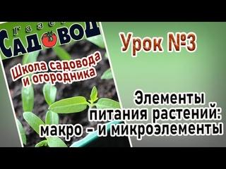ЭЛЕМЕНТЫ ПИТАНИЯ РАСТЕНИЙ: МАКРО - и микроэлементы Урок№3