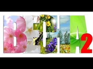 ВЕСНА -  2. Весенние изменения в природе.  Первоцветы.  Окружающий мир для начальных классов.