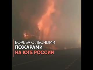 Борьба с лесными пожарами на юге России