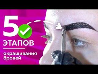 ПОЭТАПНОЕ окрашивание бровей краской | Секрет идеальных бровей от Жени Волокитиной
