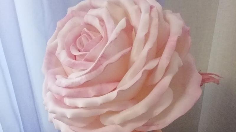 Как сформировать лепестки из изолона для розы МК