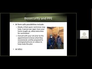 Вакцинация и биозащита во время весеннего осмотра лошади / Vaccinations and Biosecurity During Your Horse's Spring Check Up