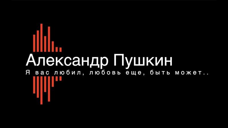 Александр Пушкин Я вас любил любовь еще быть может Стихи Поэзия Литература