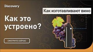 Как изготавливают вино   Как это сделано?   Discovery Channel