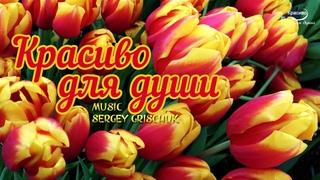 КАКАЯ РОСКОШНАЯ МУЗЫКА! За душу берет… Красиво для души! Сергей Грищук