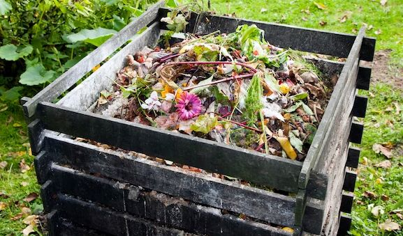 Ошибки, делающие компост бесполезным и вредным удобрением
