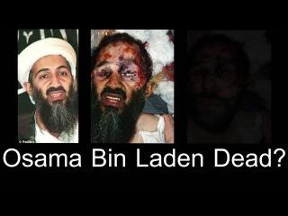 bin ladens dead body - 320×240