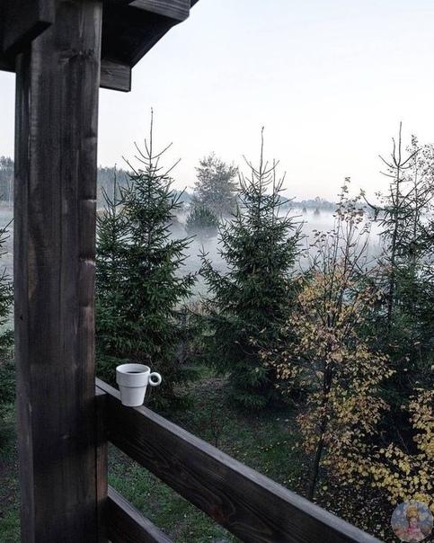 Прекрасное утро
