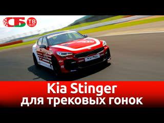 Kia Stinger для трековых гонок   видео обзор авто новостей