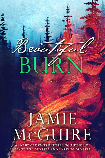 Beautiful Burn (The Maddox Brothers #4)