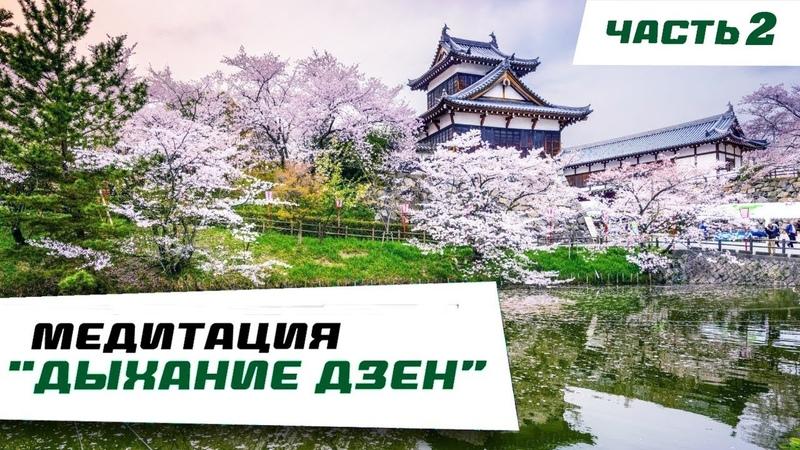 Медитация Дыхание Дзен Часть 2 Исуиэн сад Нара Япония