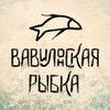 Вавилонская рыбка/Babel Fish