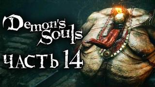 Demon's Souls: Remake ➤ Прохождение [4K] — Часть 14: СУДЬЯ СВЯТИЛИЩА БУРЬ [БОСС]