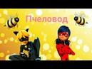Клип Леди баг и Супер кот Пчеловод