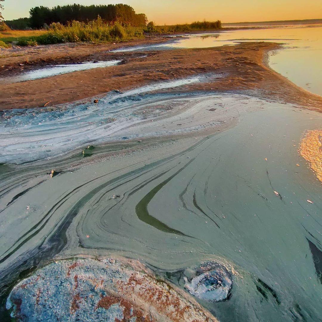 В Сети появились фотографии экокатастрофы на уникальном алтайском озере