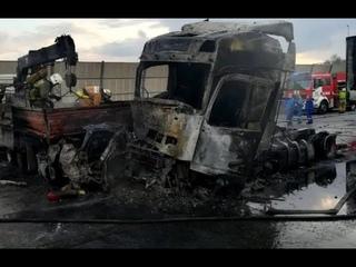 Что могло стать причиной ДТП со сгоревшими заживо на КАД в Петербурге?