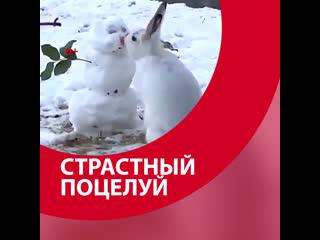 Страстный поцелуй - Москва FM