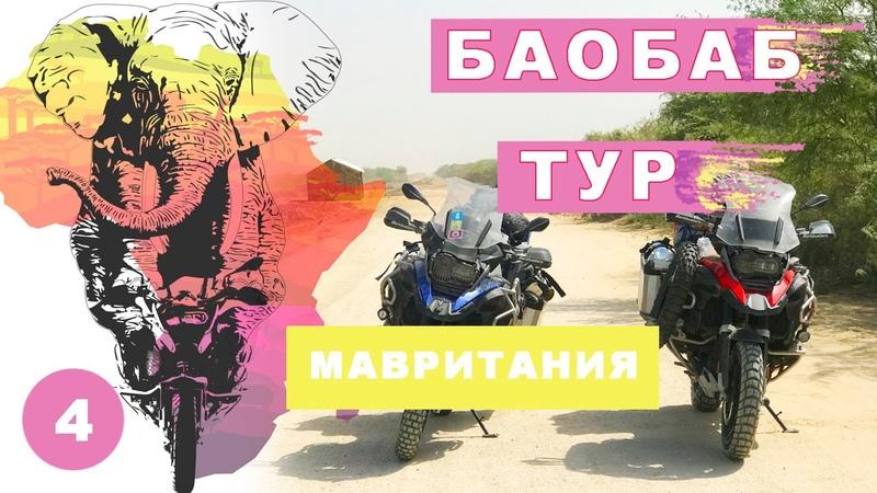 Баобаб тур Мавритания Мое большое путешествие на мотоцикле по Африке 4