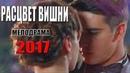 РАСЦВЕТ ВИШНИ Русские МЕЛОДРАМЫ 2017 новинки, новые сериалы hd