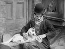 Собачья жизнь A Dogs Life, 1918