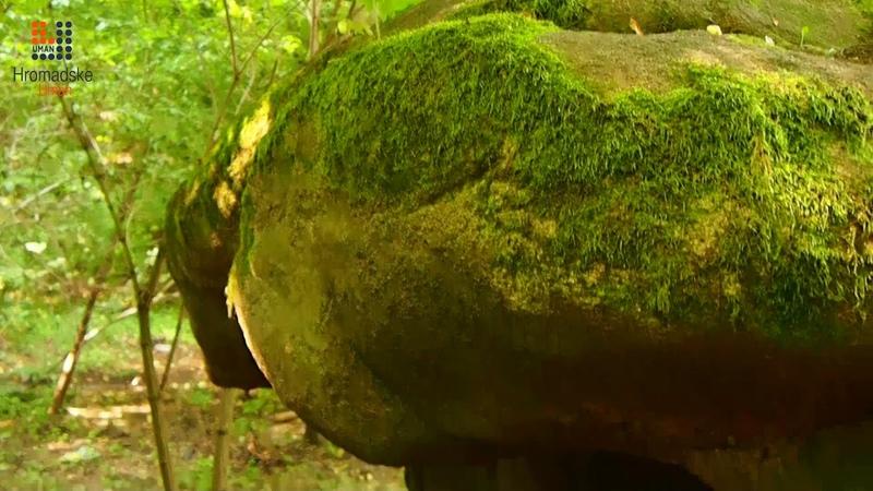 Недалеко від Умані знаходиться камінь із висіченим зображенням русалки.