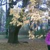 ЕкатеринаОглинда