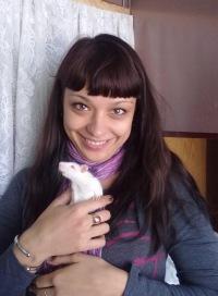 Елена Кашевич