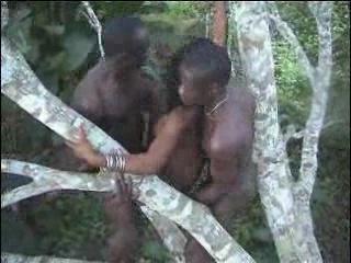 African sex шоколадку