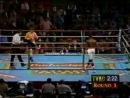 1997-01-18 Flоуd Мауwеаthеr Jr vs Jеrrу Соореr 1997-01-18 fljed vfewtfthtr jr vs jtrre cjjhtr