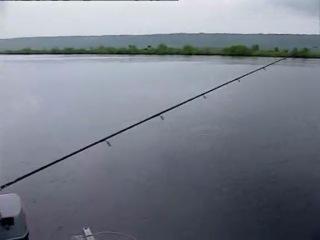 Планета рыбака Волга. От истока до устья