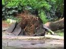 Ураган в Комсомольске на Днепре.avi
