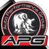Auto Performance Group