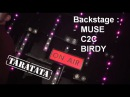 Backstage Muse, C2C, Birdy (TARATATA N°433 - Oct. 2012)
