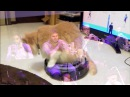 Cats on roombas jazz metal exigence mvmt 3 live @ roulette by MxE