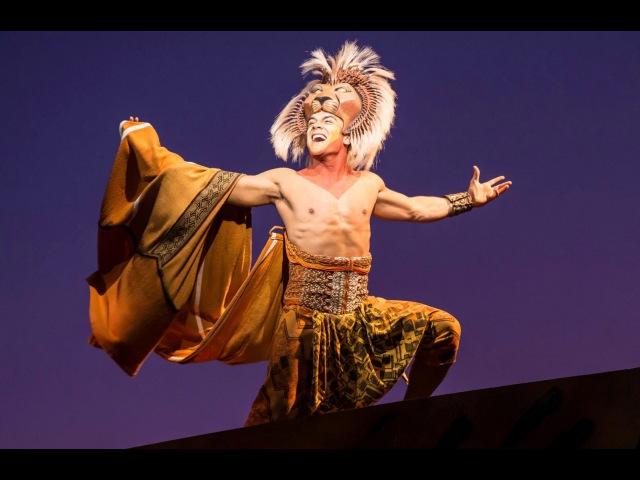 The Lion King Finale Final Busa Circle of Life Regent Theatre Melbourne