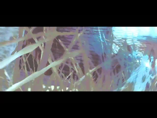 ANTOJE DREAMS - Shiner00