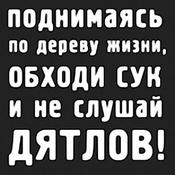Прикольные картинки с текстом на аву