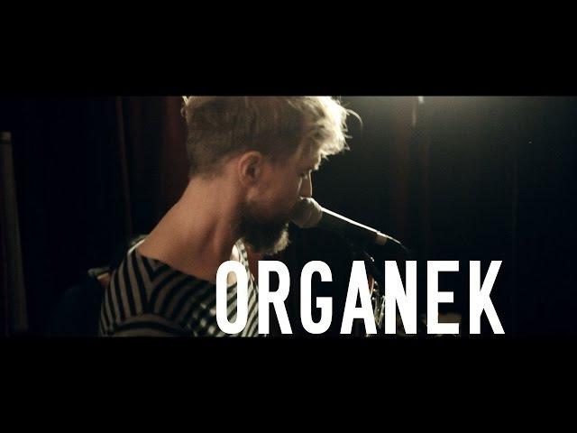 ORGANEK King of the Parasites otwARTa scena Live
