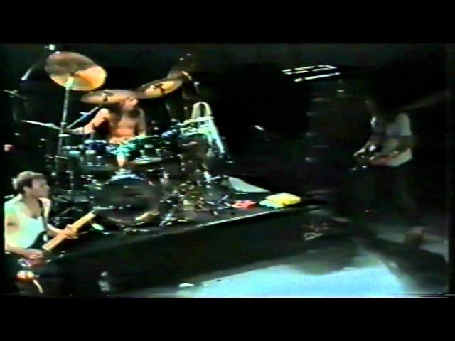 Rollins Band (Utrecht 1989) [14]. Ghost Rider