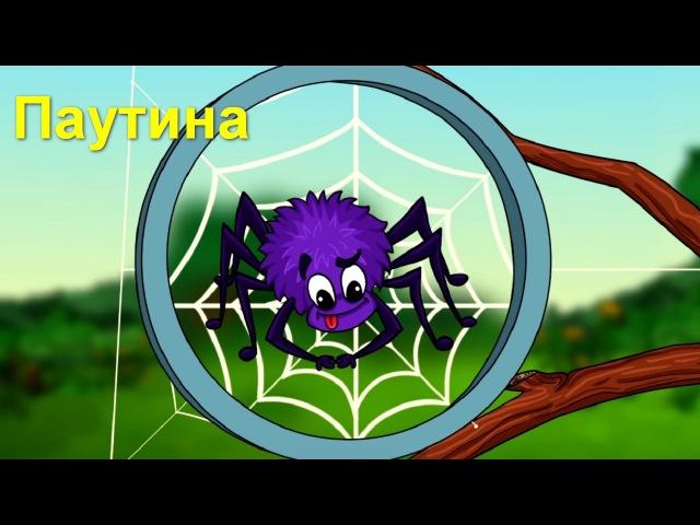 Профессор Почемушкин Познавательный мультфильм для детей Откуда паук берет свою паутину?