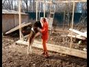Крым На 1 месяц подарок (видео)