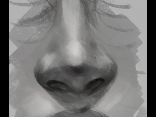 How to Draw Noses